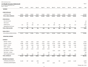 12 MONTH INCOME STATEMENT
